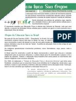 EDUCAÇÃO FÍSICA NO BRASIL ANA B ALMEIDA