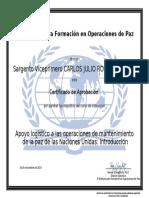 1.1 DIPLOMA - APOYOS LOGISTICO A LAS OPERACIONES DE MANATENIMINETO DE PAZ