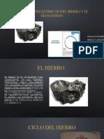 CICLO DEL HIERRO Y DEL MANGANESO