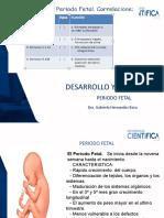 Semana 4 Periodo Fetal  GHB 2020 (2)