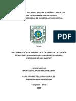 DETERMINACIÓN DE PARÁMETROS ÓPTIMOS DE OBTENCIÓN DE PALILLO  FIAI.pdf