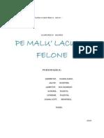 PE MALU' LACULUI FELONE (comedie)
