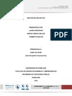estudio organizacional gestion de proyectos