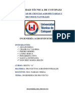PROYECTO AGROINDUSTRIAL 2 PRODUCTO.docx