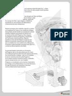 Refuerzos_para_el_docente_m8.pdf