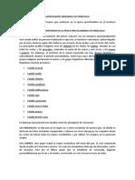 ANTEPASADOS INDIGENAS EN VENEZUELA