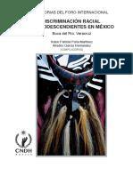 lib-FI-Discriminacion-Afrodescendientes.pdf