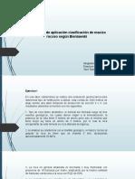 ejercicios clasificacion tiare y francisca