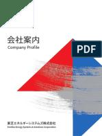 company_profile_ESS01