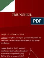13. Triunghiul