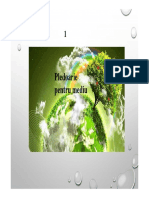1-Pledoarie-pt-mediu.pdf