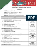 CURSO DE MODELAMIENTO GEOLÓGICO CON DATAMINE RM