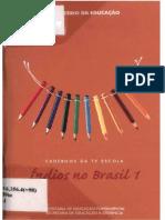 Índios no Brasil.pdf