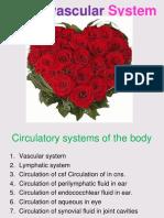 1st-week-Cardiovascular-system-1st-year-1.1.pdf