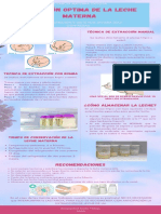 Infografía LME Extracción optima de LM, Javiera Díaz.pdf