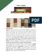 Preelaboración 18-19- EL ARROZ.docx