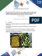Protocolo de práctica In situ.pdf