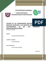 Estudios de Comunidades Bacterianas de un Biofiltro acoplado a un Digestor Anaerobio por DGGE