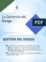 6Gestion de Riesgo.pdf