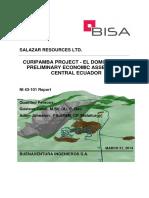 Preliminary economic assessment curipamba