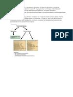 Глюкокортикоиды.docx