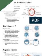 embriologiia