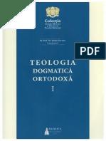 Stefan Buchiu - Teologia dogmatica.pdf