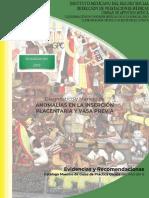 GER anomalía de la placenta.pdf