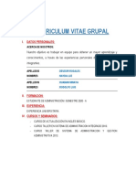 CURRICULUM VITAE GRUPAL.pdf