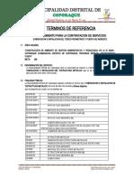 RTM SERVICIO DEL ESTRUCTURA METALICA CCAMANOCCA.docx