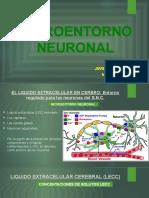 Teoria-MICROENTORNO-NEURONAL