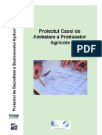 Raport_Casa_Ambalare