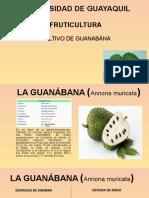 GUANABANA MARCELO SIMANCAS 6-1.pptx