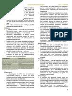 Hiperplasia Prostática Benigna- Nayara.pdf