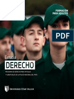 PFA-POLICIA.pdf
