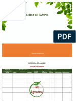 Bitacora-campo.pdf