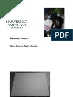 ÁLBUM DE TRABAJO.docx