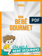 Bônus - Bebê Gourmet.pdf