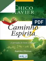 caminhoespirita.pdf