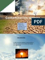 contaminacion ambiental final