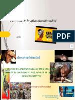 Feliz día de la afrocolombianidad