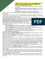 SANMARTINO.docx