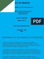 IMPORTANCIA DE LOS CANALES.pptx