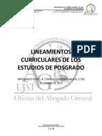LINEAMIENTOS-CURRICULARES-DE-LOS-ESTUDIOS-DE-POSGRADO