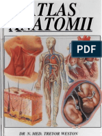 Treyor Atlas Anatomii