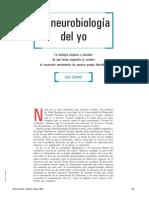 Neurobiologia Del Yo