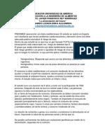 Video alimentos.pdf