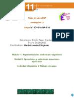 PerezCalderon_Pablo_M11S3AI5