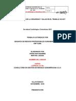 Actividad Salud Ocupacional - UCC
