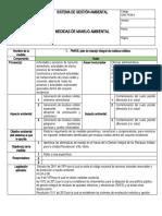 Final Formato  Medidas de Manejo 1781851 PGIRS Carolina Quiroz Suárez